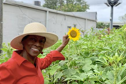 The Isaiah Project maintains a community garden in south St. Petersburg.